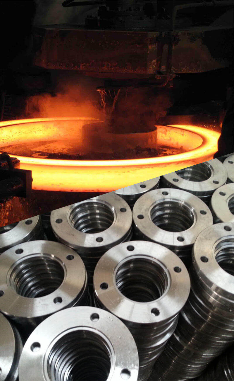 Hastelloy C276 Flange manufacturer and Supplier